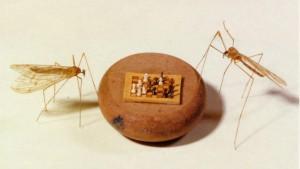musée de la miniature Montélimar